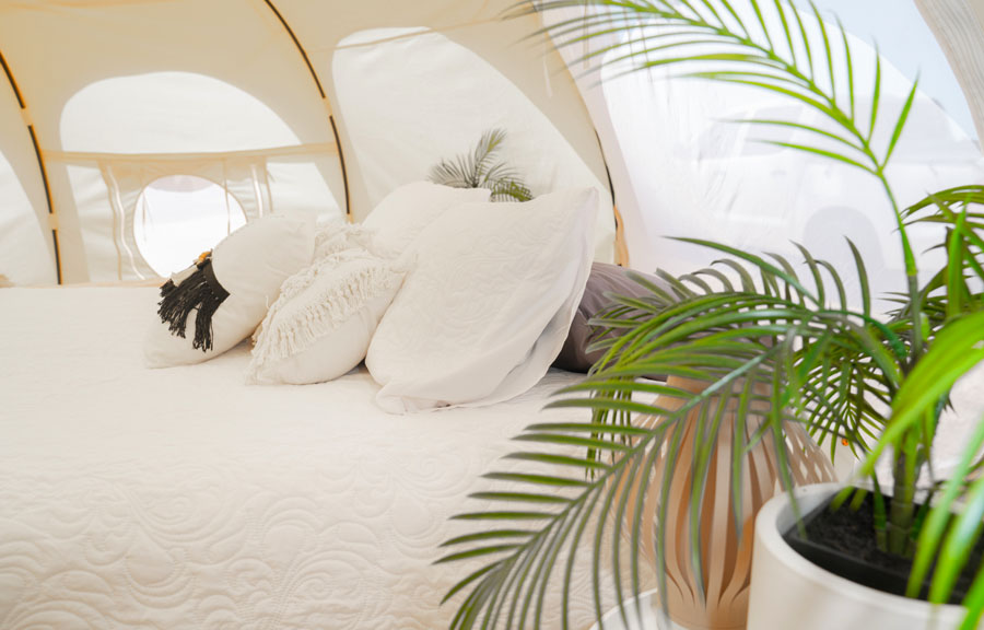 Glamp in Style with Sunrise Eco Glamping